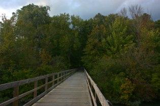 boardwalk_nature_center